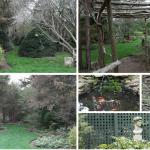Meyer Garden Photo Workshop