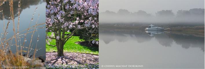 Cheryl Machat Dorskind: Hamptons' photo classes