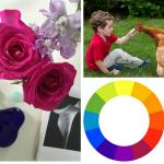 exploring color 2, advanced online class